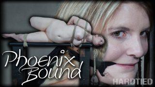 Phoenix Bound Hardtied.com – onlinexxx.cc