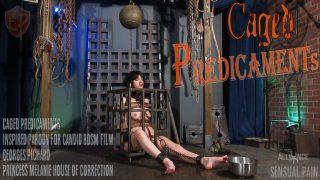 Caged Predicaments Sensualpain.com – onlinexxx.cc